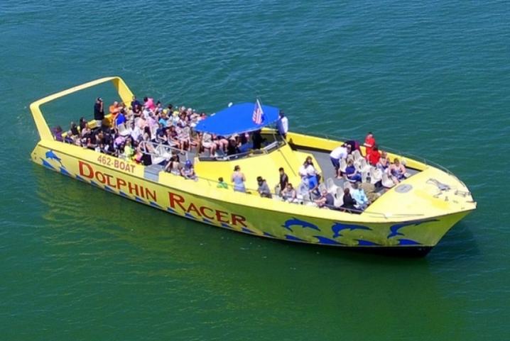 dolphin-racer-speedboatfleet1photo_1